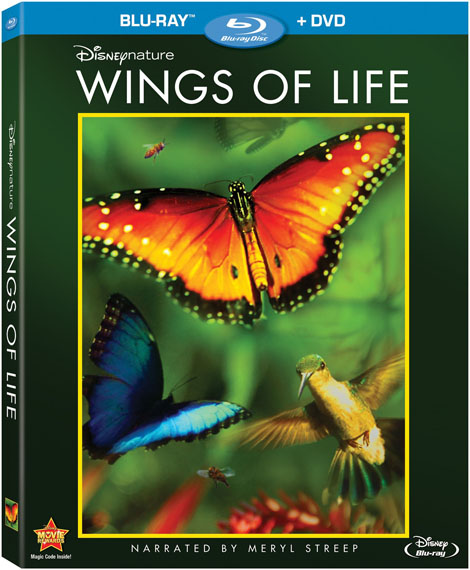 Wings-of-Life-2011
